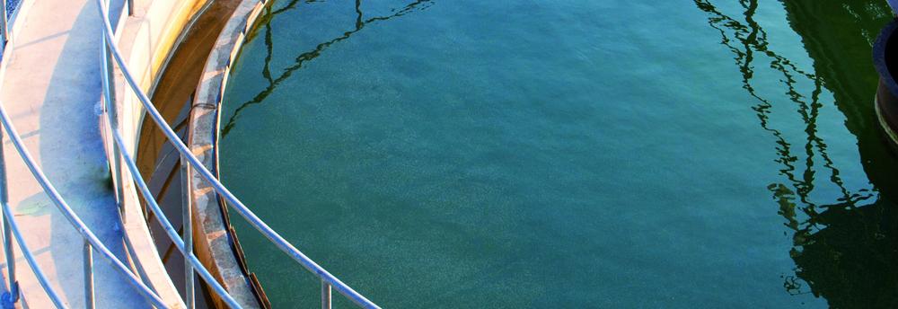 acque